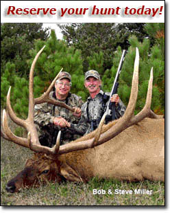 Michigan Elk Hunting of Ludington, MI offers bow, muzzle loader, and rifle hunters guided hunts of prized trophy deer and bull elk with the largest antlers / horns in the USA.